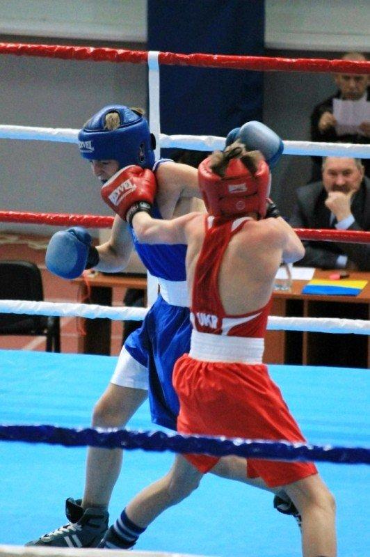 В Артемовске начали отбор лучших боксеров для чемпионата Украины, фото-8