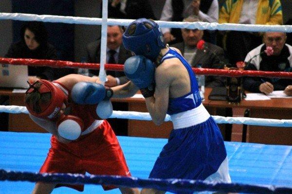В Артемовске начали отбор лучших боксеров для чемпионата Украины, фото-9