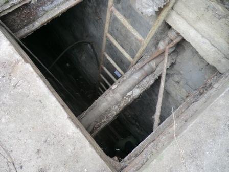 В центре Севастополя спасли собаку, 2 недели просидевшую в глубокой шахте, фото-1