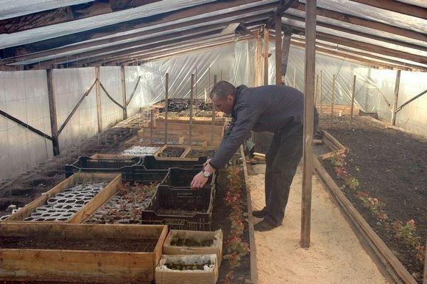 Чем кормят осужденных в Темновской исправительной колонии? (ФОТО), фото-11