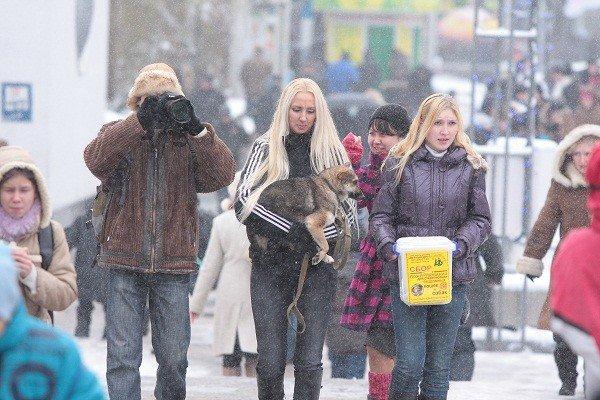 Защитники животных готовятся митинговать в центре Симферополя, фото-1