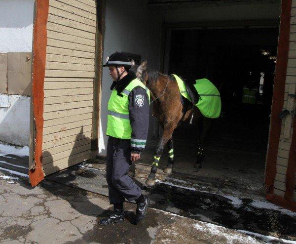 Донецкая милиция оседлала Барона и Волшебника (фото), фото-2