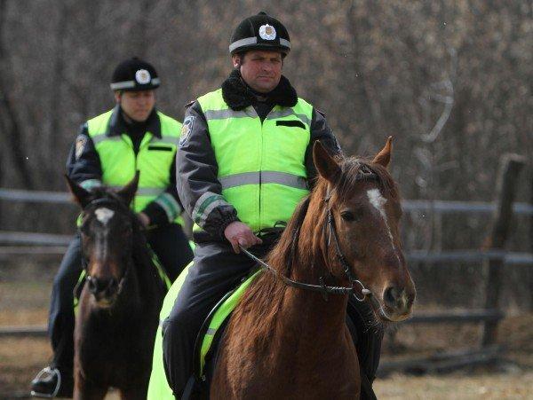 Донецкая милиция оседлала Барона и Волшебника (фото), фото-4