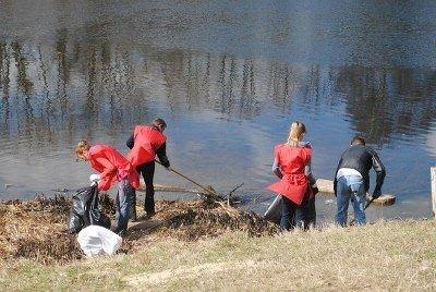 Екофани Львова зібрали майже тонну сміття під час толоки в парку «Горіховий гай», фото-1