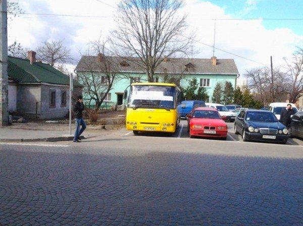 Самотня маршрутка Олени Голєвої пікетує Луцьку міськраду (ФОТО), фото-1