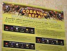 В Донецкой области закрыли 12 букмекерских контор, фото-2