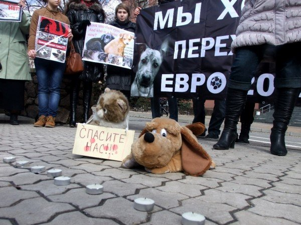 В Донецке протестовали против массовых убийств животных (фото), фото-1