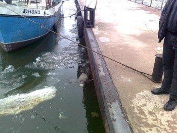 В Азовском море нашли трупы загадочно исчезнувшей супружеской пары (фото), фото-1