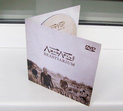Горловская группа «ЛихоЛесье» издалась в DVD-формате, фото-1