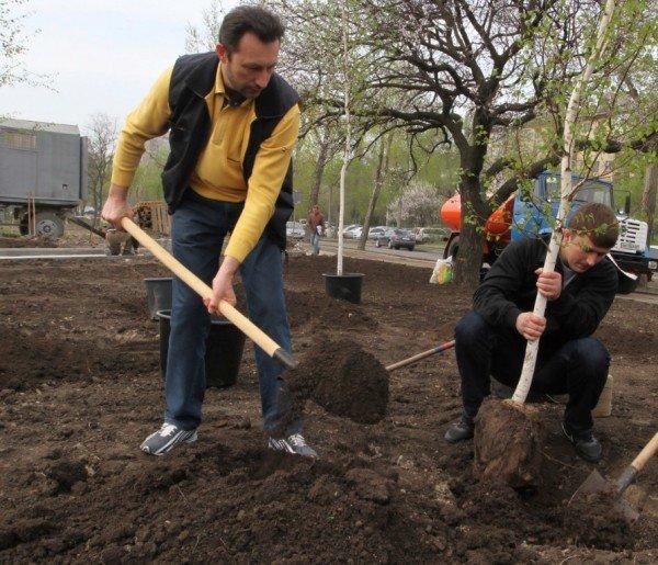 Как в Донецке губернатор, мэр и председатель облсовета садили деревья (фото), фото-7