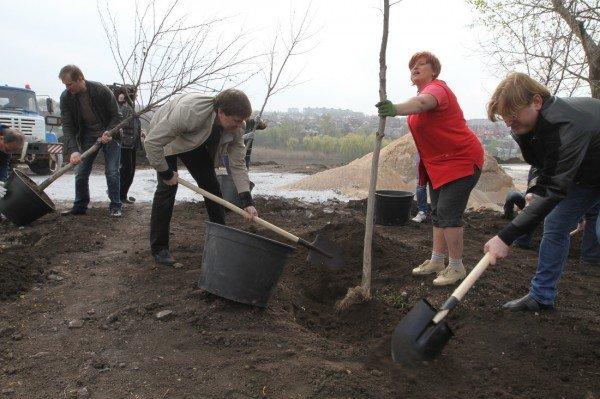 Как в Донецке губернатор, мэр и председатель облсовета садили деревья (фото), фото-8