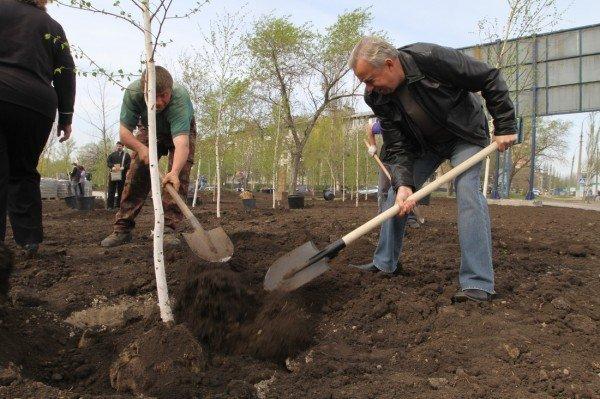 Как в Донецке губернатор, мэр и председатель облсовета садили деревья (фото), фото-9