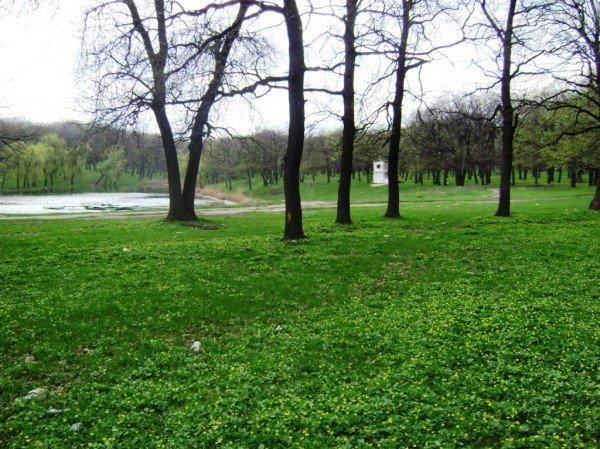 Где жителям Артемовска на свежем воздухе провести маевку?, фото-4