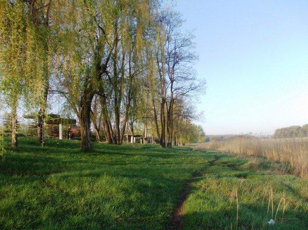 Маёвка на Северном ставке в Артемовске: о белках, утках и мусоре, фото-11