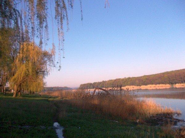 Маёвка на Северном ставке в Артемовске: о белках, утках и мусоре, фото-3