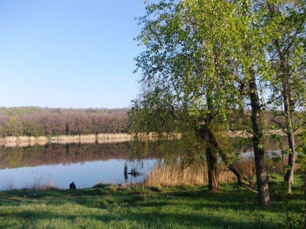 Маёвка на Северном ставке в Артемовске: о белках, утках и мусоре, фото-9