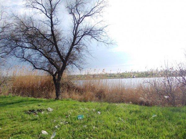 «Майские» на артемовской дамбе: мусора много – дров мало, фото-5