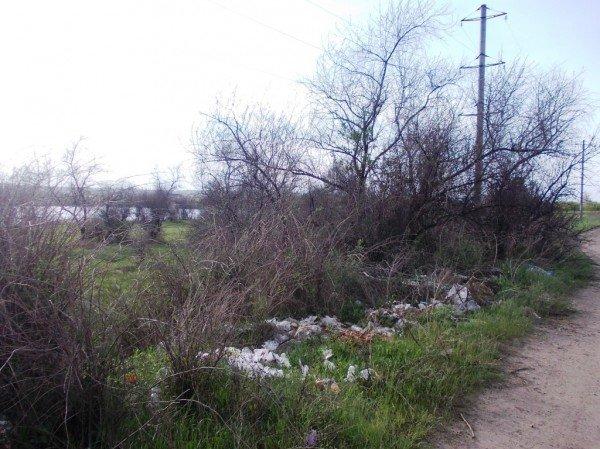 «Майские» на артемовской дамбе: мусора много – дров мало, фото-7