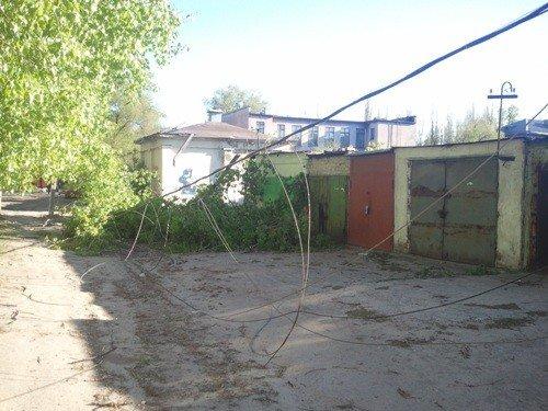 В Липецке ветром валило деревья, фото-5