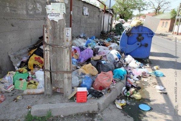 Первомайский подарок от мэрии Симферополя: с улиц города не вывозят мусор (ФОТО), фото-5