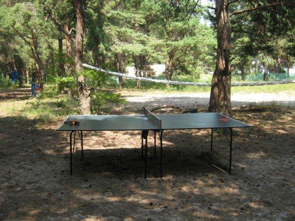 Дитячий табір «Чародії» пропонує 2 безкоштовних дня відпочинку для тих, кто приїде у табір 16 червня, фото-4