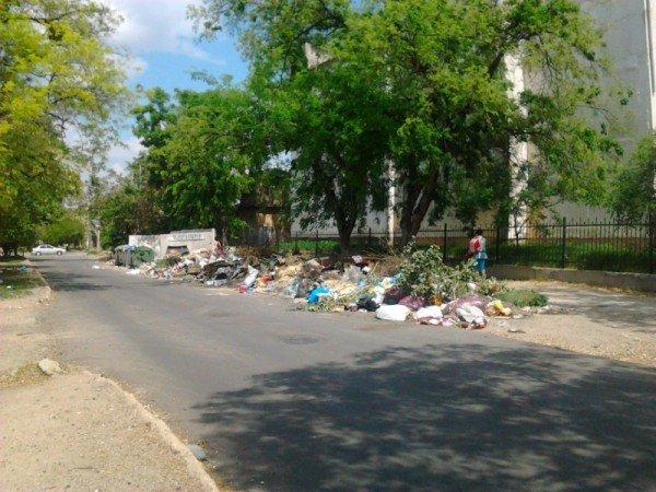 Фотофакт: Симферопольская школа утопает в мусоре, фото-2