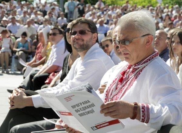 Горловчане присутствовали на форуме объединенной оппозиции, где приняли программу о свержении Януковича, фото-5