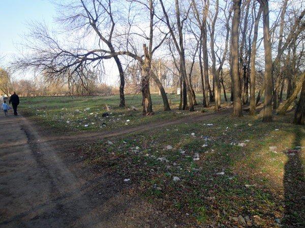 Жители 5-го квартала жалуются на мусор во дворах, забитые канализации и своры бездомных собак, фото-5