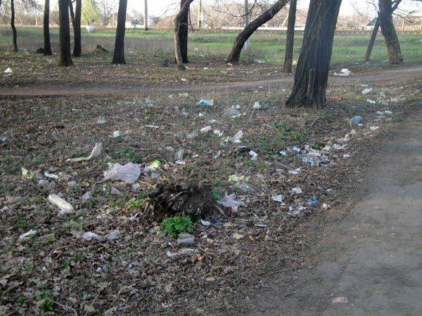 Жители 5-го квартала жалуются на мусор во дворах, забитые канализации и своры бездомных собак, фото-8