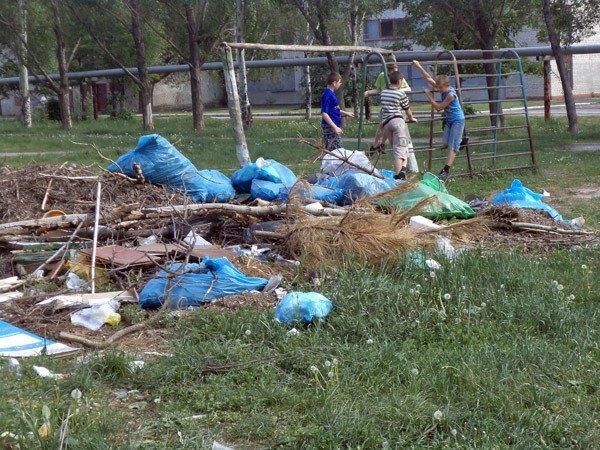 Жители 5-го квартала жалуются на мусор во дворах, забитые канализации и своры бездомных собак, фото-1