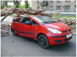 В Донецкой области, упавшее дерево едва не убило женщину, сидевшую за рулем «Мицубиси» (фото), фото-1