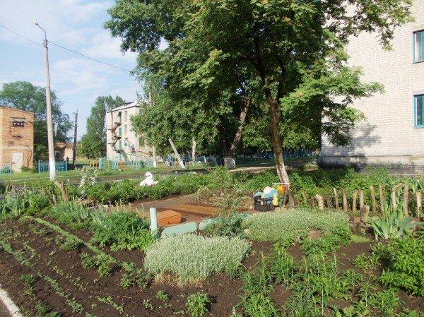 Сайт 06274 ищет самые красивые дворы Артемовска, фото-2