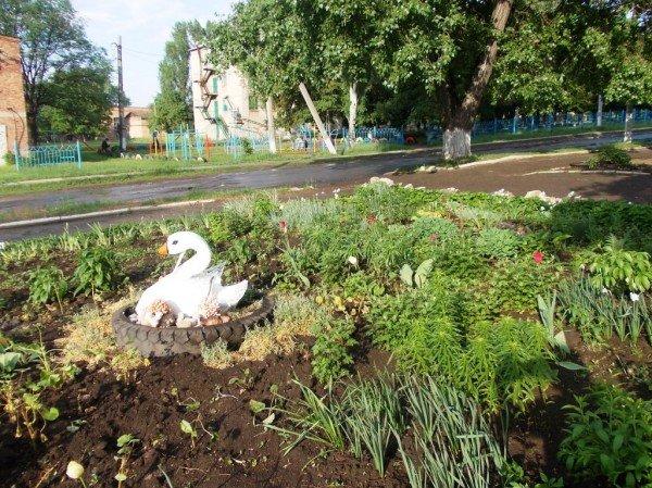 Сайт 06274 ищет самые красивые дворы Артемовска, фото-6