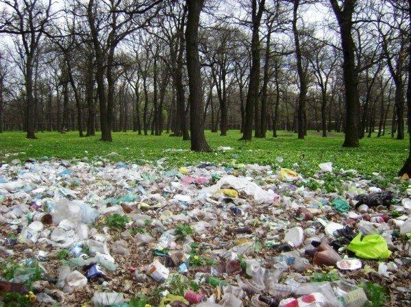 На «Золотой рыбке» в Часов Яре мусора все больше и больше, фото-2