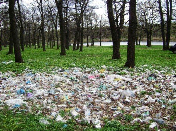 На «Золотой рыбке» в Часов Яре мусора все больше и больше, фото-4