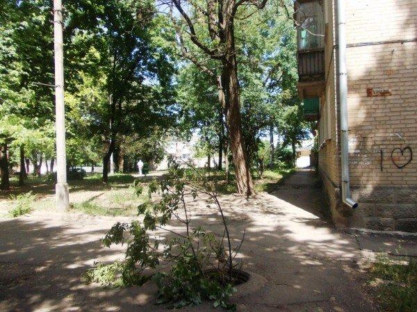 В Артемовске девушка провалилась в открытый люк и сломала пальцы, фото-2