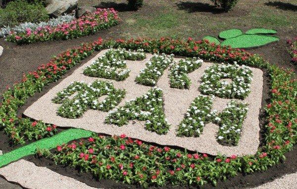 В Донецке экофаны высадили цветочную клумбу  (фото), фото-2