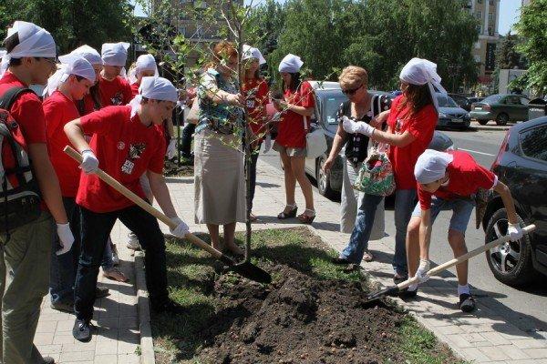В Донецке экофаны высадили цветочную клумбу  (фото), фото-4