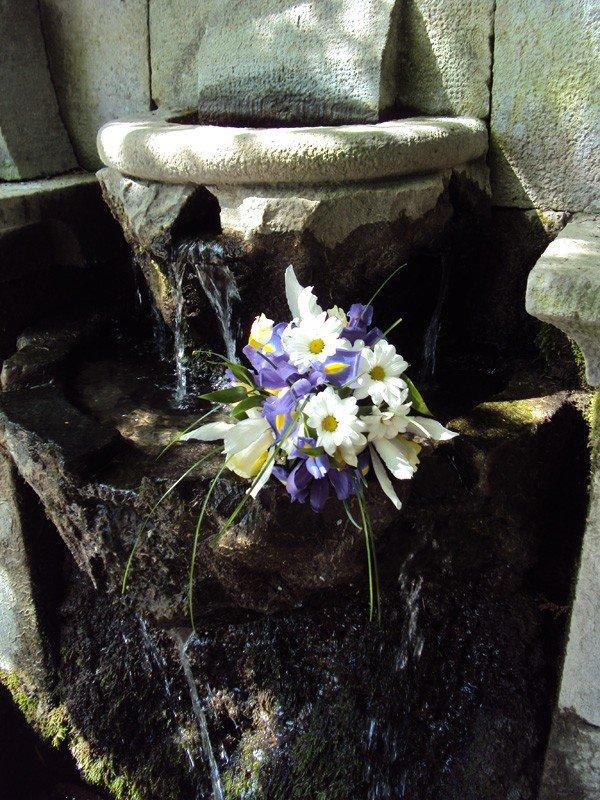 «Таинственный сад» приглашает..., фото-5