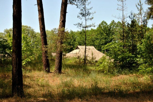 В донецком лесу проложили экологическую тропу (фото), фото-4