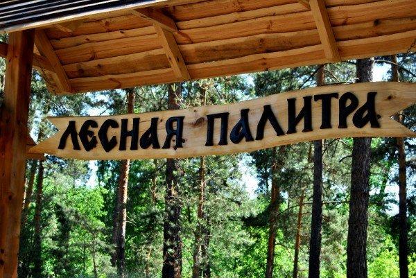 В донецком лесу проложили экологическую тропу (фото), фото-5