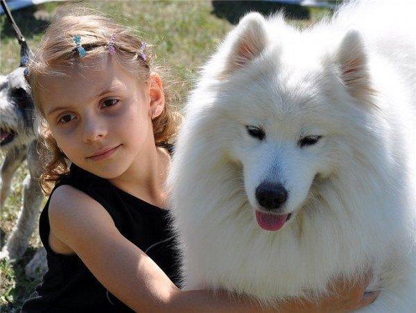 Самый красивый щенок Донецкой области живет в Артемовске, фото-3
