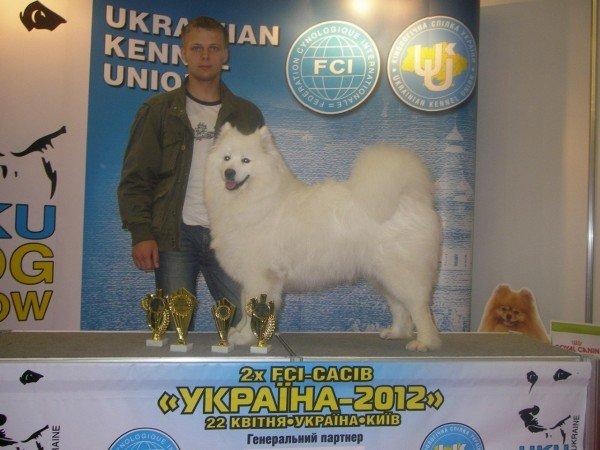 Самый красивый щенок Донецкой области живет в Артемовске, фото-5