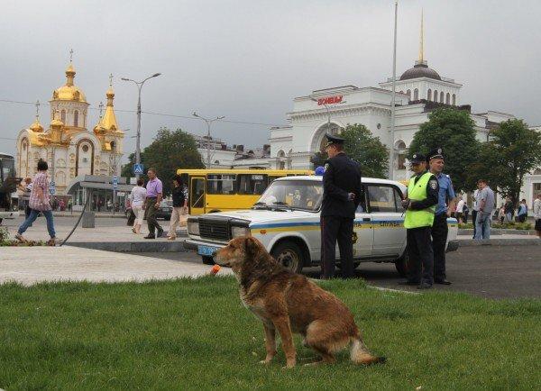 Под зонтиком чудесным с Ляшко митинговать прелестно — скандальный нардеп приехал в Донецк спасать бизнес от «произвола власти» (видео), фото-5