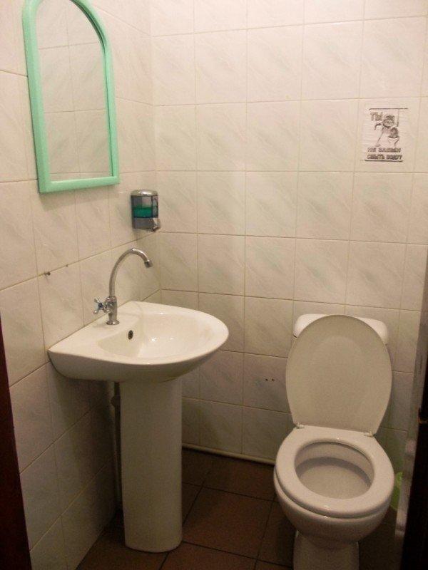 «Райский» туалет в Артемовске стремится оправдать свое название, фото-1