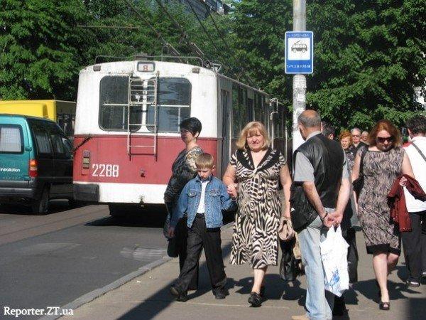 У Житомирі стояли тролейбуси. Обрив контактної лінії (ФОТО), фото-4