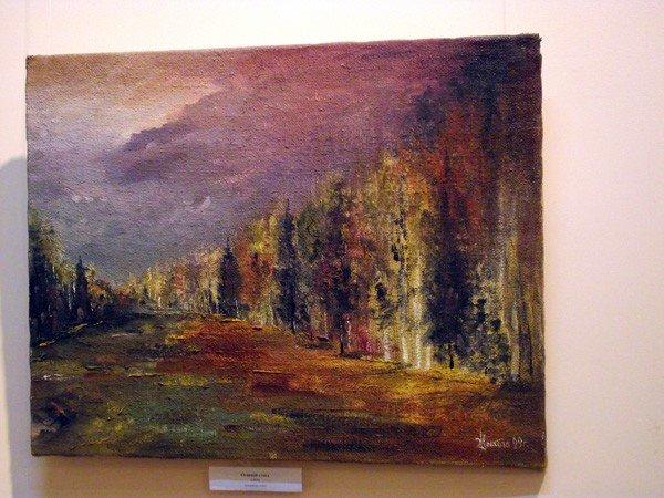 Горловский художник Валерий Цыкоза открыл свою выставку «Странник искусства», фото-4