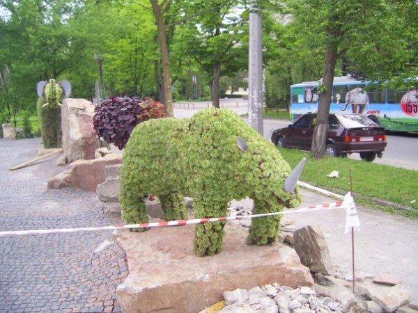 Увага! У Тернополі з'явилися дивні тварини (фото), фото-2