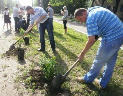 В Горловке теперь есть Аллея журналистов, фото-1