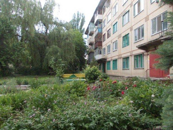 Территорию возле дома №138 по улице Петровского начали благоустраивать еще с 70-х годов прошлого века, фото-2
